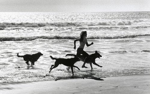 The joy of being animal | Aeon