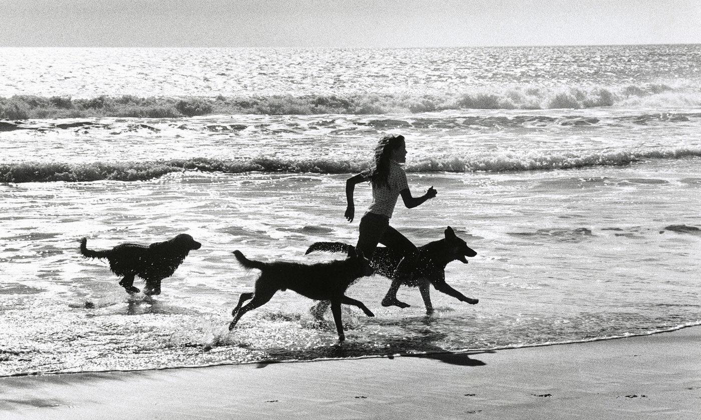 The joy of being animal   Aeon