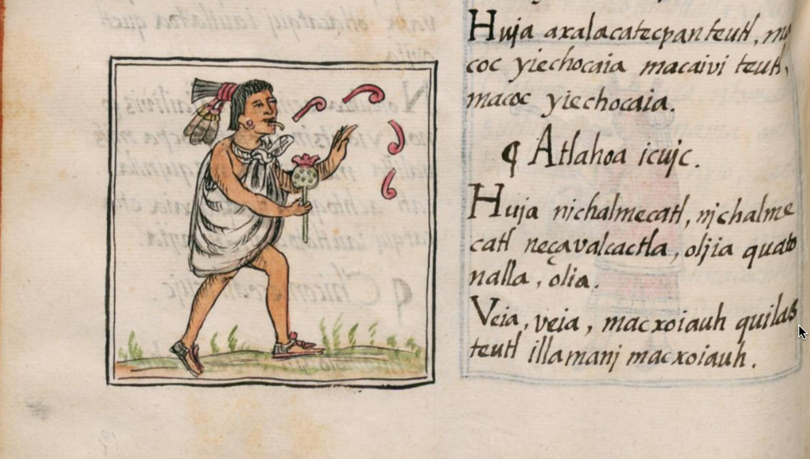 Learning Nahuatl, the flower song, and the poetics of life | Psyche