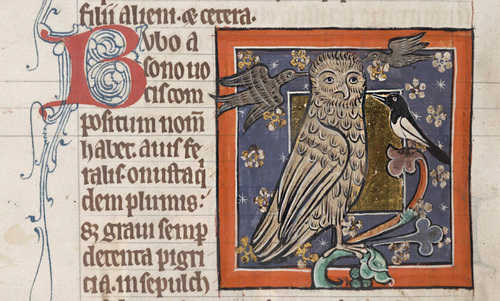 To see the antisemitism of medieval bestiaries, look for the owl | Aeon