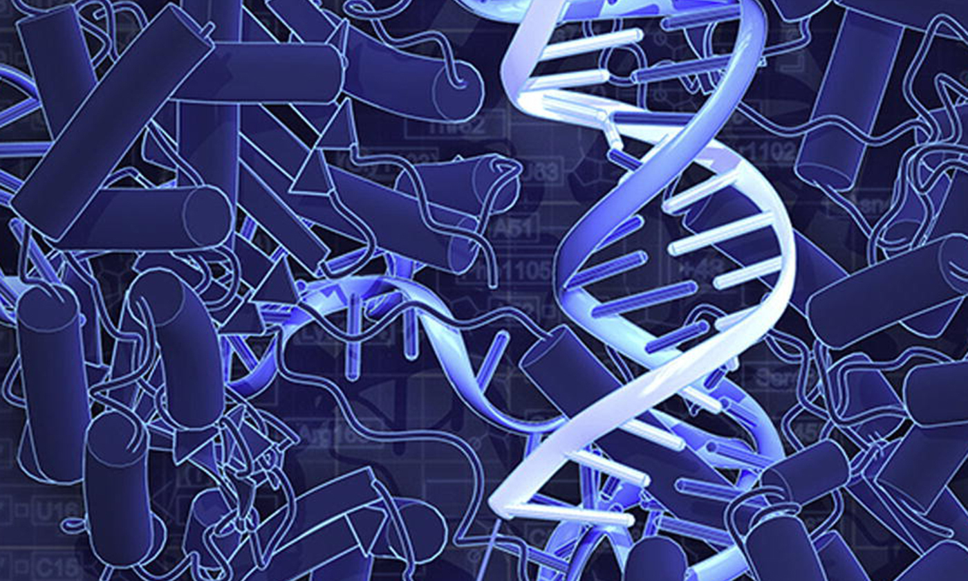 an argument in favor of genetic engineering Arguments in favor of inheritable genetic  germline engineering for those very few  or another argument concerning inheritable genetic.